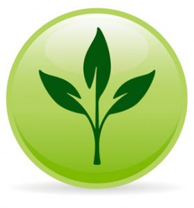 green pest control frenchs forest