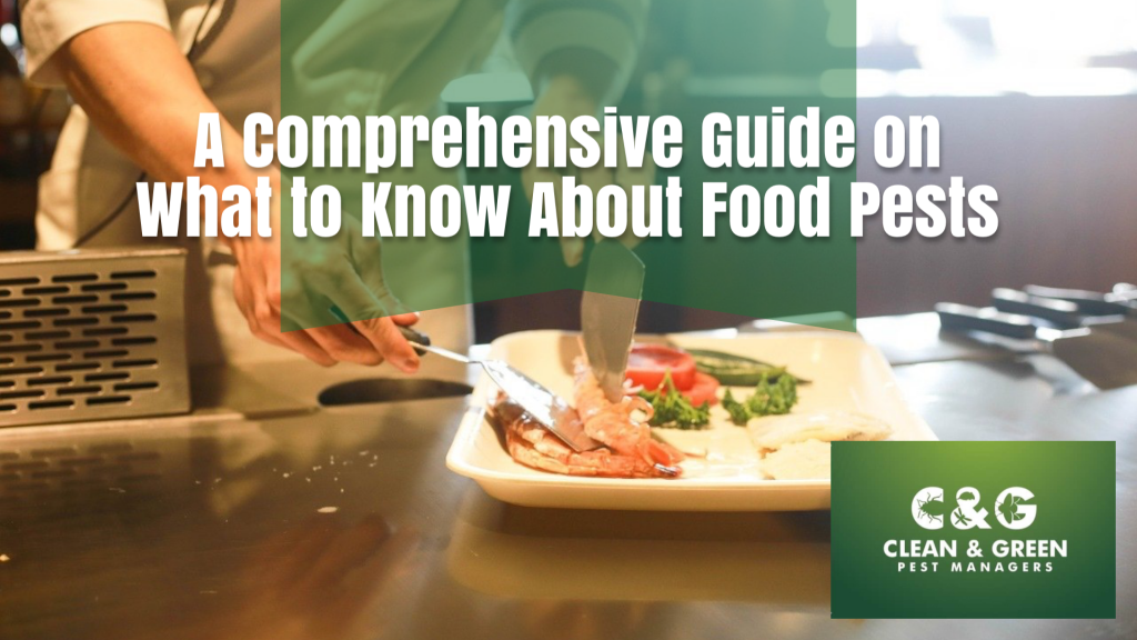What to know about food pests