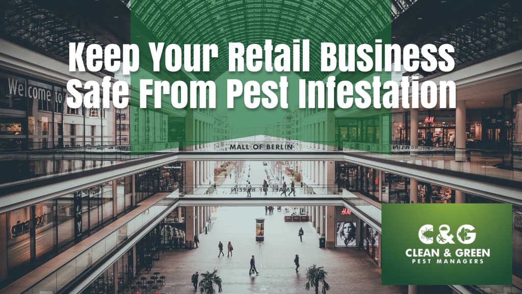 Keep Your Retail Business Safe From Pest Infestation