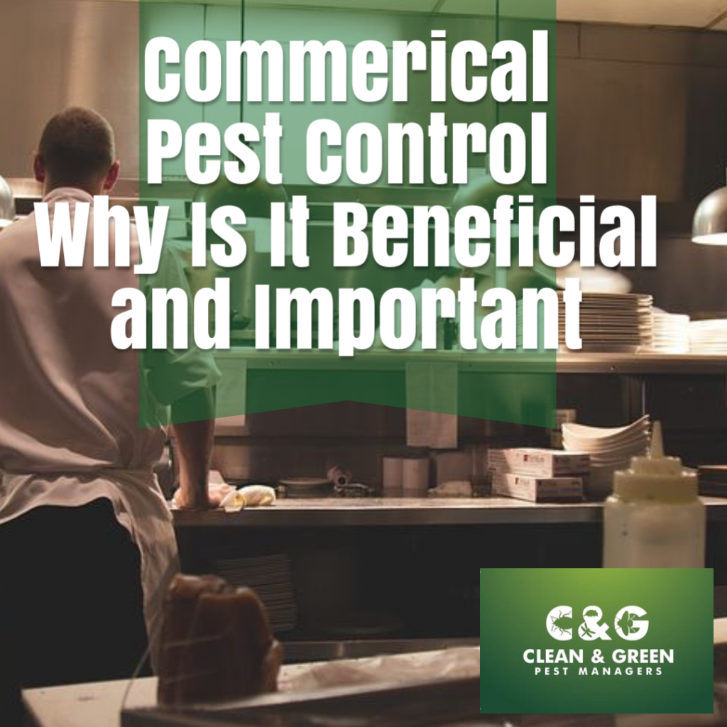Clean and Green Pest Control Topic cover