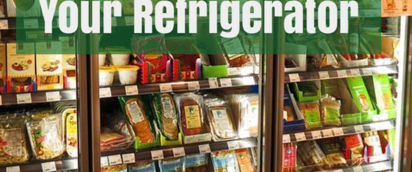 How to Deal with Pest Infestations in Your Refrigerator